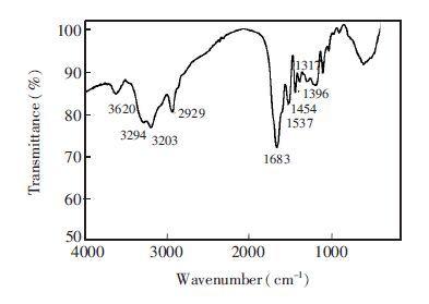 电路 电路图 电子 原理图 393_279