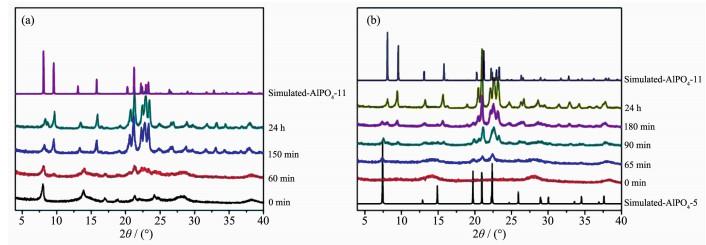 ,而如果向合成体系引入同哌啶具有完全相同构型的环己烷则得不到相应的晶化产物。这些结果表明有机胺中的N原子在结构导向效应中起到了至关重要的作用,在保持其它合成参数不变的情况下,任何影响有机胺中N原子上电子云密度的因素都可能会影响该有机胺的结构导向效应。 在微孔晶体的合成中,结构导向效应体现在晶化过程中。对于一些合成体系,目标微孔结构直接从初始凝胶中形成,其晶核在诱导阶段从初始凝胶中生成,经生长阶段长成微米级的晶体(一些专门用于合成纳米晶的体系除外),有机胺表现出一种结构导向效应。而对于另外一些合成体系,在晶