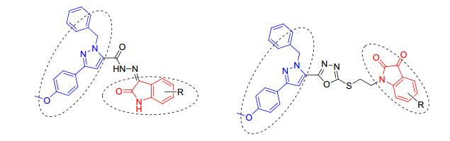 具有靛红结构的吡唑衍生物的合成及其诱导非小细胞肺癌a549细胞凋亡的